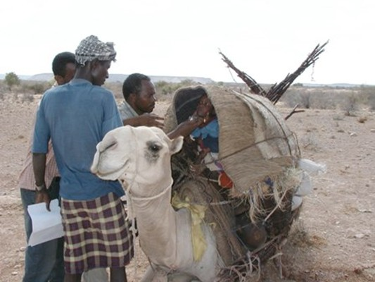 Polio immunization of a nomadic child. Frequent population movements across Somalia meant that children of nomadic populations were at particular risk of polio.