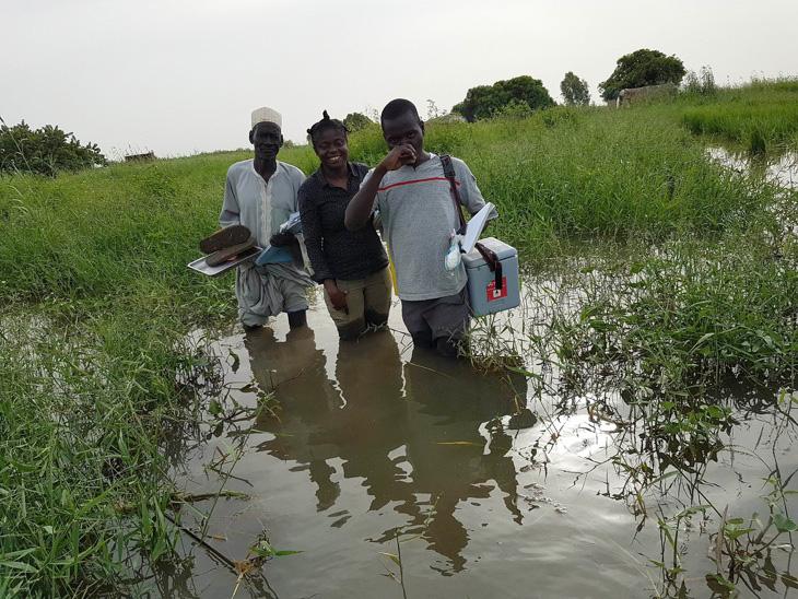 La Dre Adele Daleke Lisi Aluma et ses collègues se frayent un chemin à travers les marécages du lac Tchad pour vacciner les enfants jusque dans les zones les plus difficiles d'accès. © OMS / Tchad